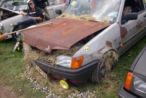 Ford Fiesta Ratte