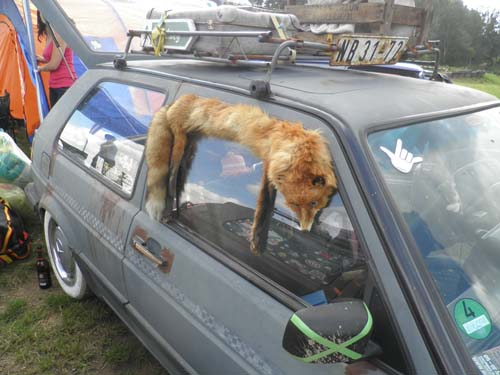 Eingeklemmter Fuchs